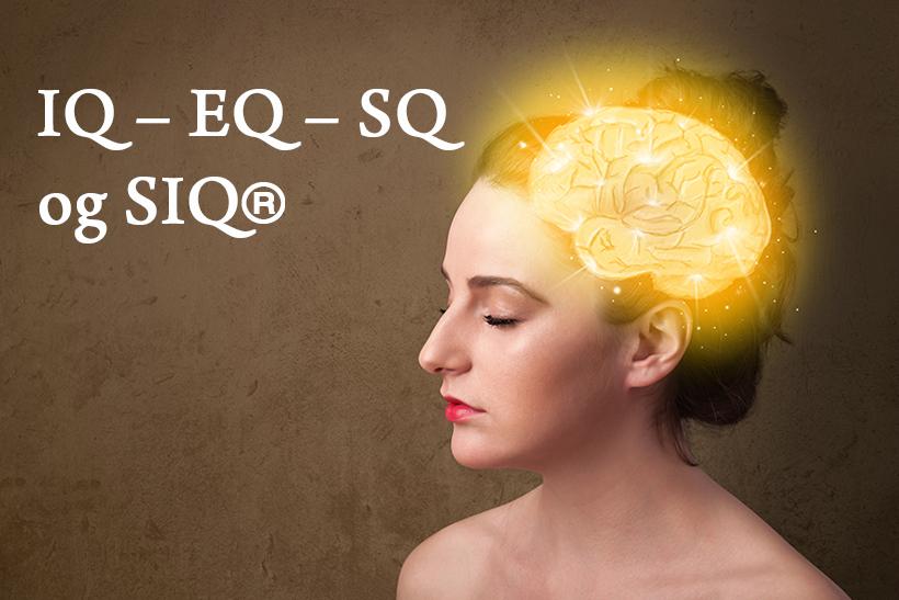 IQ – EQ – SQ – og SIQ®
