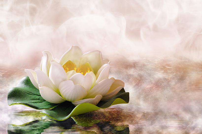 Hvad består SIQ®-Den Spirituelle Intelligens af?