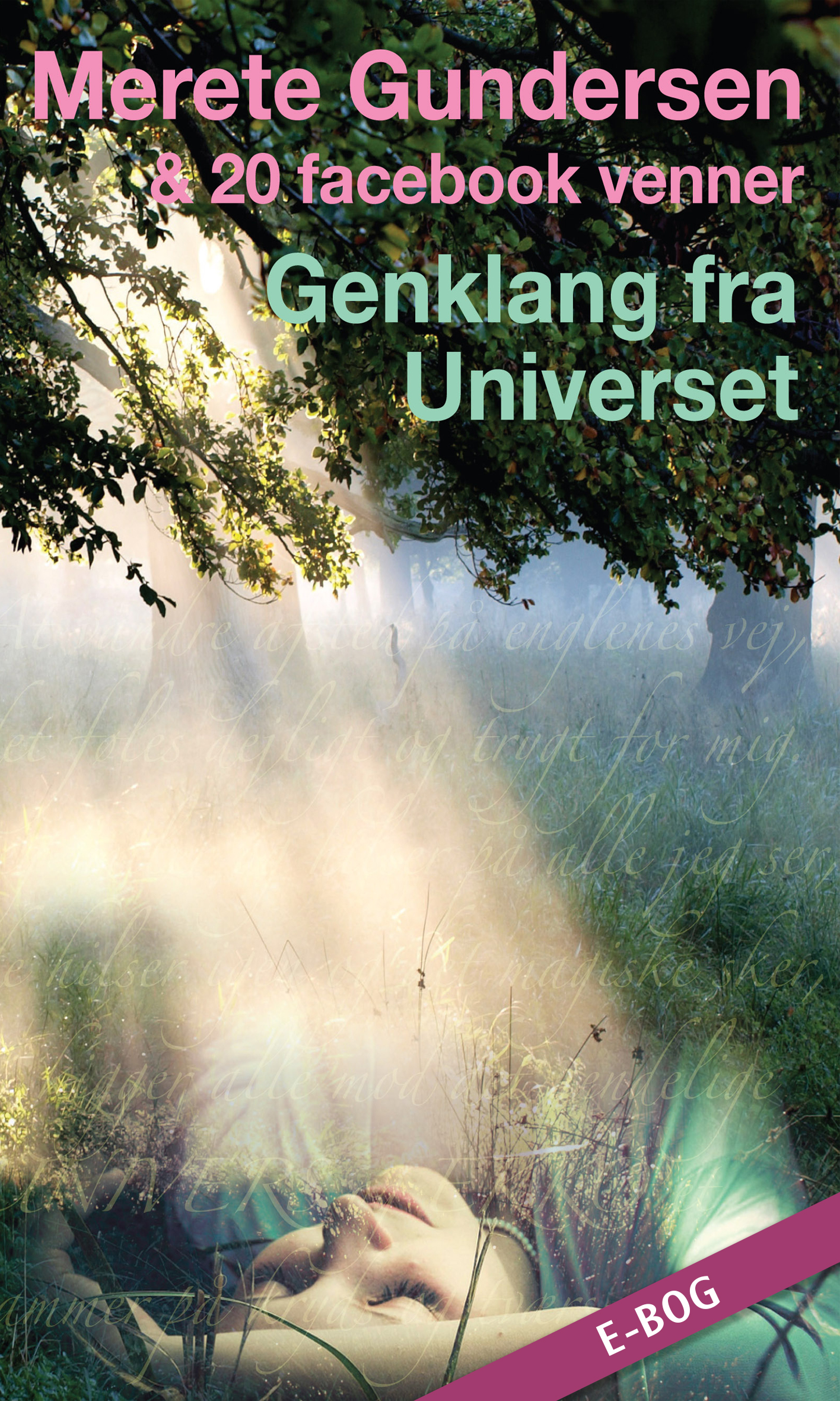 E-bog: Genklang fra Universet