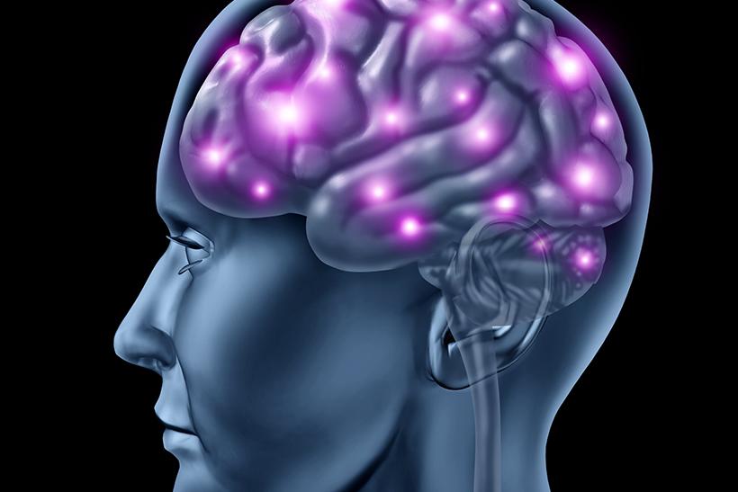 Spejlneuroner og den spirituelle intelligens