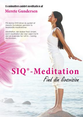 SIQ®- Meditation, Find din livsvision