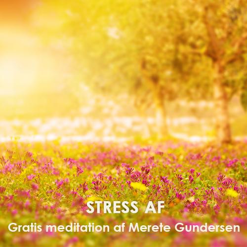 Gratis meditation - Stress af