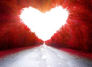 Hjertets Energi og Kærlighedens vej